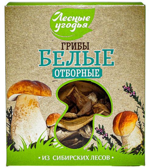 лесные угодья грибы сушеные